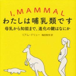「わたしは哺乳類です」リアム・ドリュー著、梅田智世訳