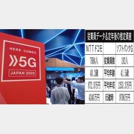 NTTドコモとソフトバンクG(C)日刊ゲンダイ