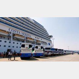 1回の寄港で数千人の観光客(C)日刊ゲンダイ