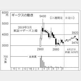 ギークス(C)日刊ゲンダイ
