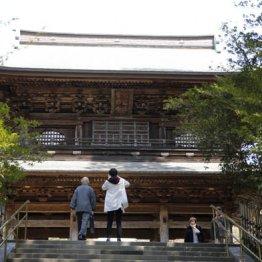 秋の鎌倉・江の島や川越は「フリー切符」でおトクに旅する