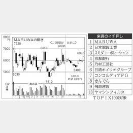 MARUWA(C)日刊ゲンダイ