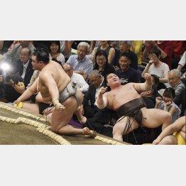 北勝富士(左)に寄り切りで敗れた白鵬(C)共同通信社