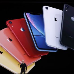 売れなさそうなiPhone11