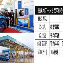 10月から料金値上げ 東京ガスと東邦ガスの生涯給与を比較