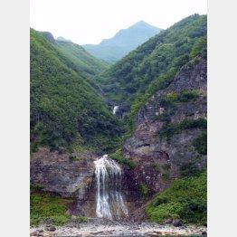 カムイワッカの滝(C)日刊ゲンダイ