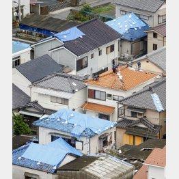 いまだブルーシートで覆われている屋根(共同通信社ヘリから)