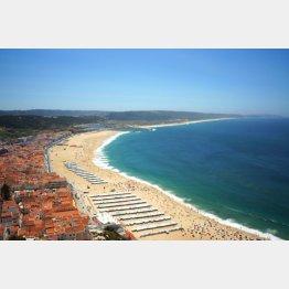 ポルトガル・ナザレの白砂のビーチ(提供)たかのてるこ