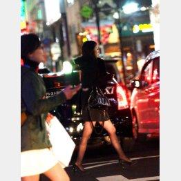 ヒットはミニだけではなかった(写真はイメージ)(C)日刊ゲンダイ