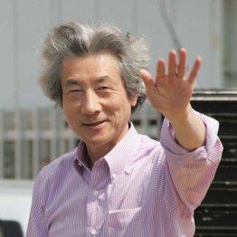 ファンクラブ名誉会長になっていただいた小泉純一郎元首相