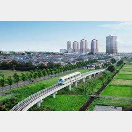 エリア内を新交通システムが運行している(提供写真)