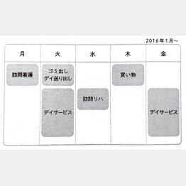 工藤さん家の「ケアプラン」(C)日刊ゲンダイ