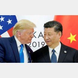 お互い引くに引けないが…(トランプ米大統領と中国の習近平国家主席)/(C)ロイター