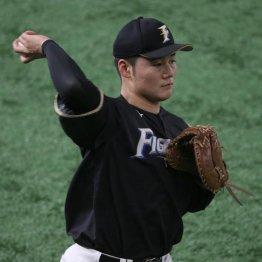 日ハムOBが指摘 清宮幸太郎の右肘手術は終わりの始まりか
