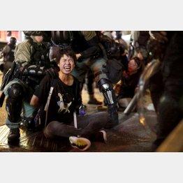 7日、香港・旺角で、デモ参加者を拘束する警察官ら(C)ロイター