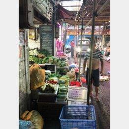 長沙の街並み。どの店でも野菜がおいしかった(C)日刊ゲンダイ