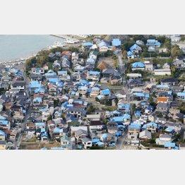 台風15号の被害で屋根がブルーシートに覆われた千葉県鋸南町の家々(C)共同通信社