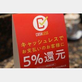 「お得で便利」だが……(C)日刊ゲンダイ