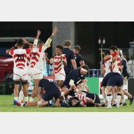スコットランドに勝利し、喜ぶ選手たち(C)日刊ゲンダイ