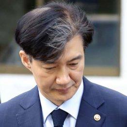 """韓国疑惑の""""タマネギ""""法相辞任 文大統領支持率は最低更新"""
