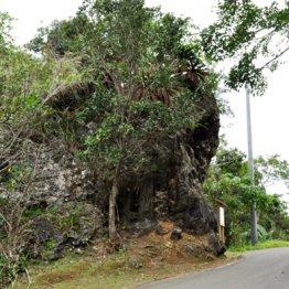 通行料はタダも…沖縄・フェーレー岩行きはお金がかかった