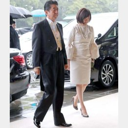 ドレスコード違反?(即位礼正殿の儀に参列した安倍首相夫妻)/(C)ロイター