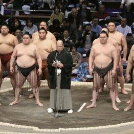 八角理事長のあいさつ直後に…(前列左から2人目が豪栄道)/