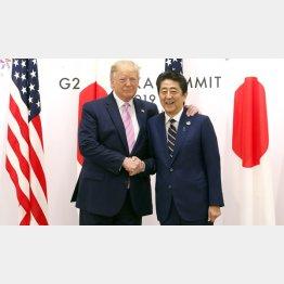 日本が得した具体例は挙げることはできない(安倍首相とトランプ米大統領)/(C)日刊ゲンダイ