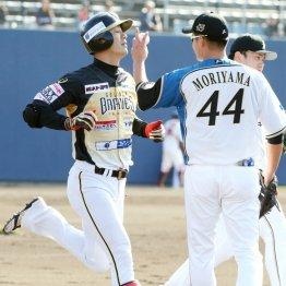 元阪神・西岡はトライアウトで4タコ2K 球界復帰は絶望的に