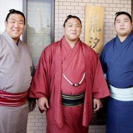 (左から)若隆元、若隆景、若元春