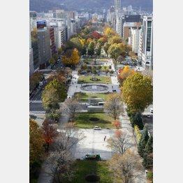 札幌市の大通公園(C)共同通信社
