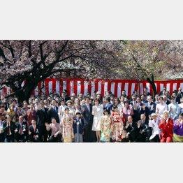 「桜を見る会」に山口県からバス17台ぶんの後援関係者らを招待した安倍首相/(C)日刊ゲンダイ
