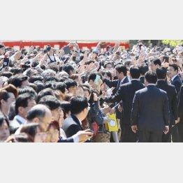 2019年は1万8200人が参加した(C)日刊ゲンダイ