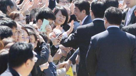 """自民改選議員を""""常習""""招待「桜を見る会」で48人違法当選か"""