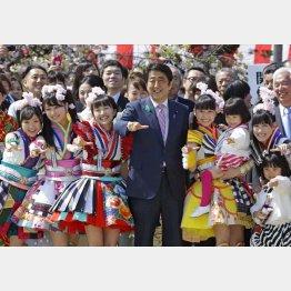 2015年の安倍首相主催「桜を見る会」/(C)日刊ゲンダイ