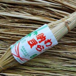 除草剤や農薬を使わない「稲ワラ」で納豆も作っちゃいます