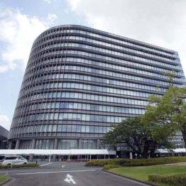 トヨタ社員自殺…パワハラ認定の具体例とされた時の対処法