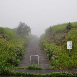 """全国にある""""信仰の峠""""  あのザビエルは長崎平戸市で峠越え"""