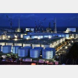 福島第1原発敷地にたまる放射能汚染水タンク(C)共同通信社