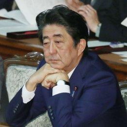 ニュースに無関心な日本人は政治の悪に慣れてしまったのか