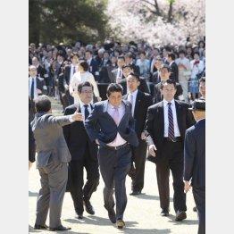 正当化のためなら何でもありの安倍政権(2019「桜を見る会」)/(C)日刊ゲンダイ