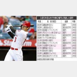 エンゼルス・大谷翔平(C)日刊ゲンダイ