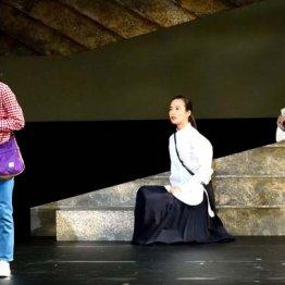 二兎社「私たちは何も知らない」時代に抗した女性群像劇