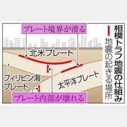 世界で最も地震のリスクが高い場所(C)共同通信社