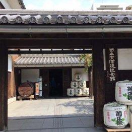 <兵庫編>日本発の世界遺産・姫路城は外国人に大人気!