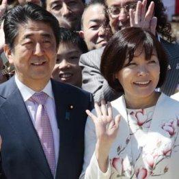 安倍内閣1年ぶり不支持上回る 「桜」影響大で自民もマッ青