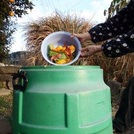 家庭で野菜と花を作る 残り湯も米のとぎ汁も使うエコ生活