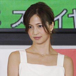 新幹線で息子を怒鳴ったと告白 安田美沙子の行動は悪い?