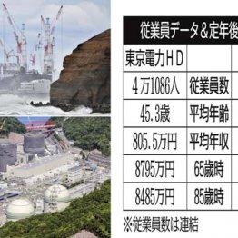 【東京電力vs関西電力】注目の中で問われるエネルギー政策