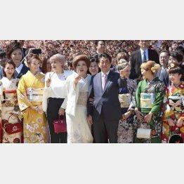 2019年安倍首相主催の「桜を見る会」/(C)日刊ゲンダイ